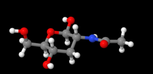 "This rendition of a NAG molecule is courtesy of Kevinjh, submitted through ""Commons"" on October 19, 2011."